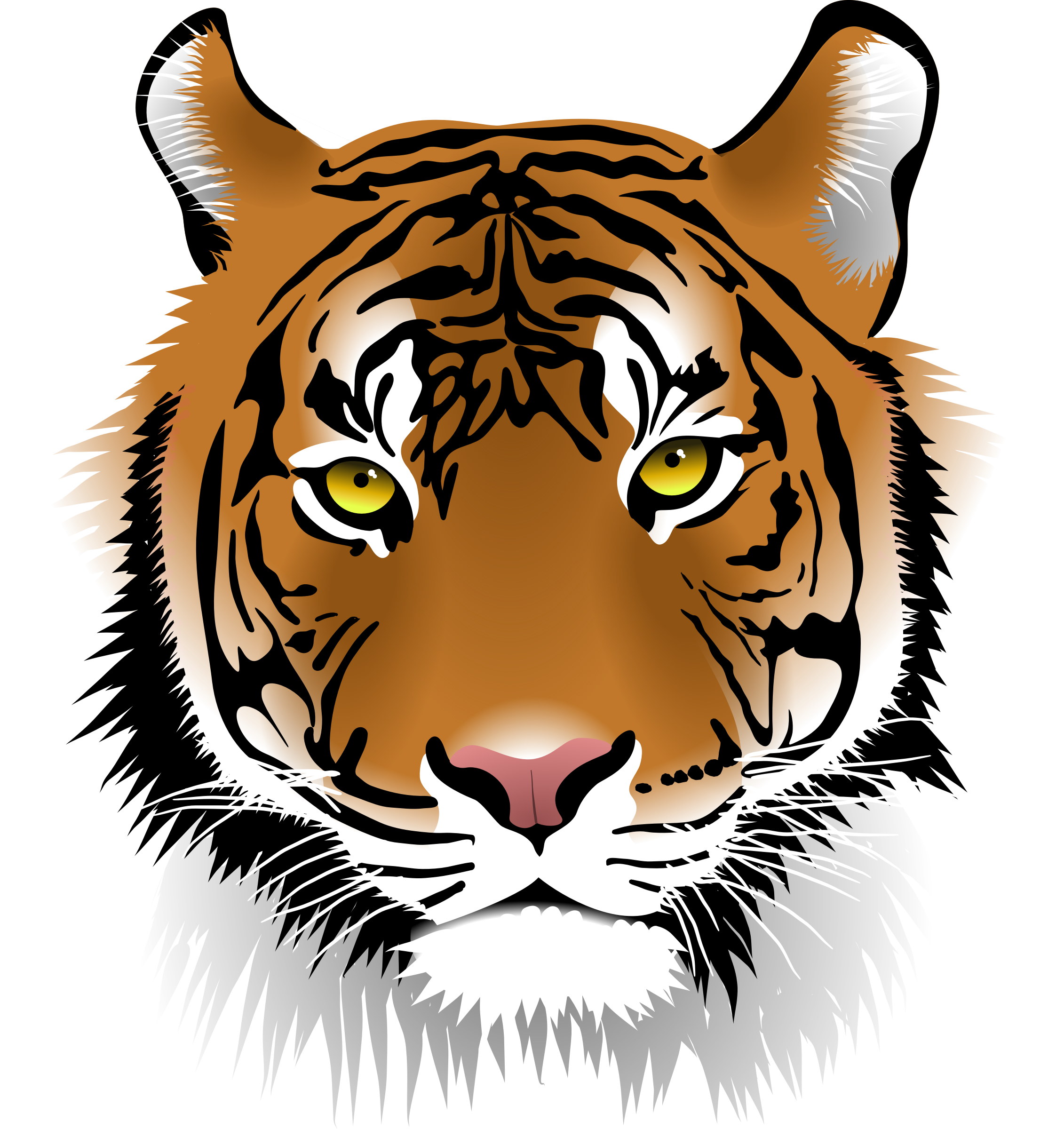 PNG Tiger Face