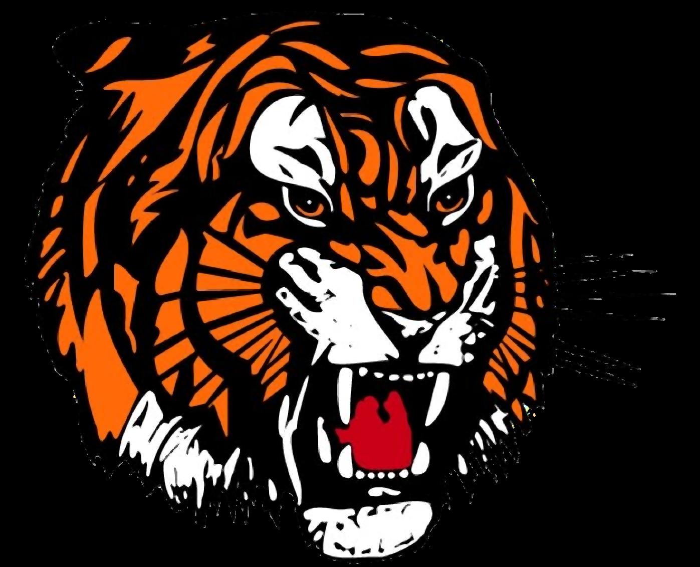 Tiger Face PNG Transparent Im