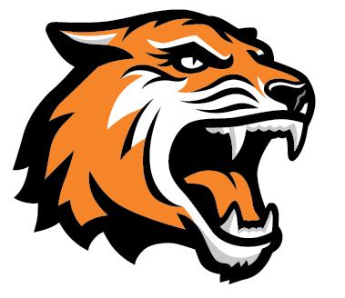 PNG Tiger Face - 58679