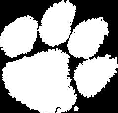 PNG Tiger Paw - 58807