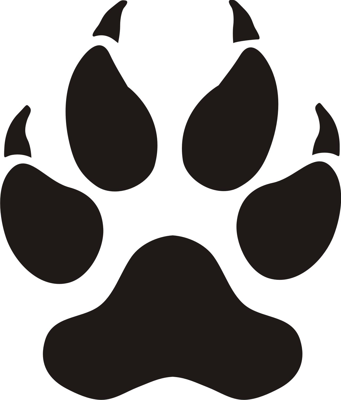 PNG Tiger Paw - 58801