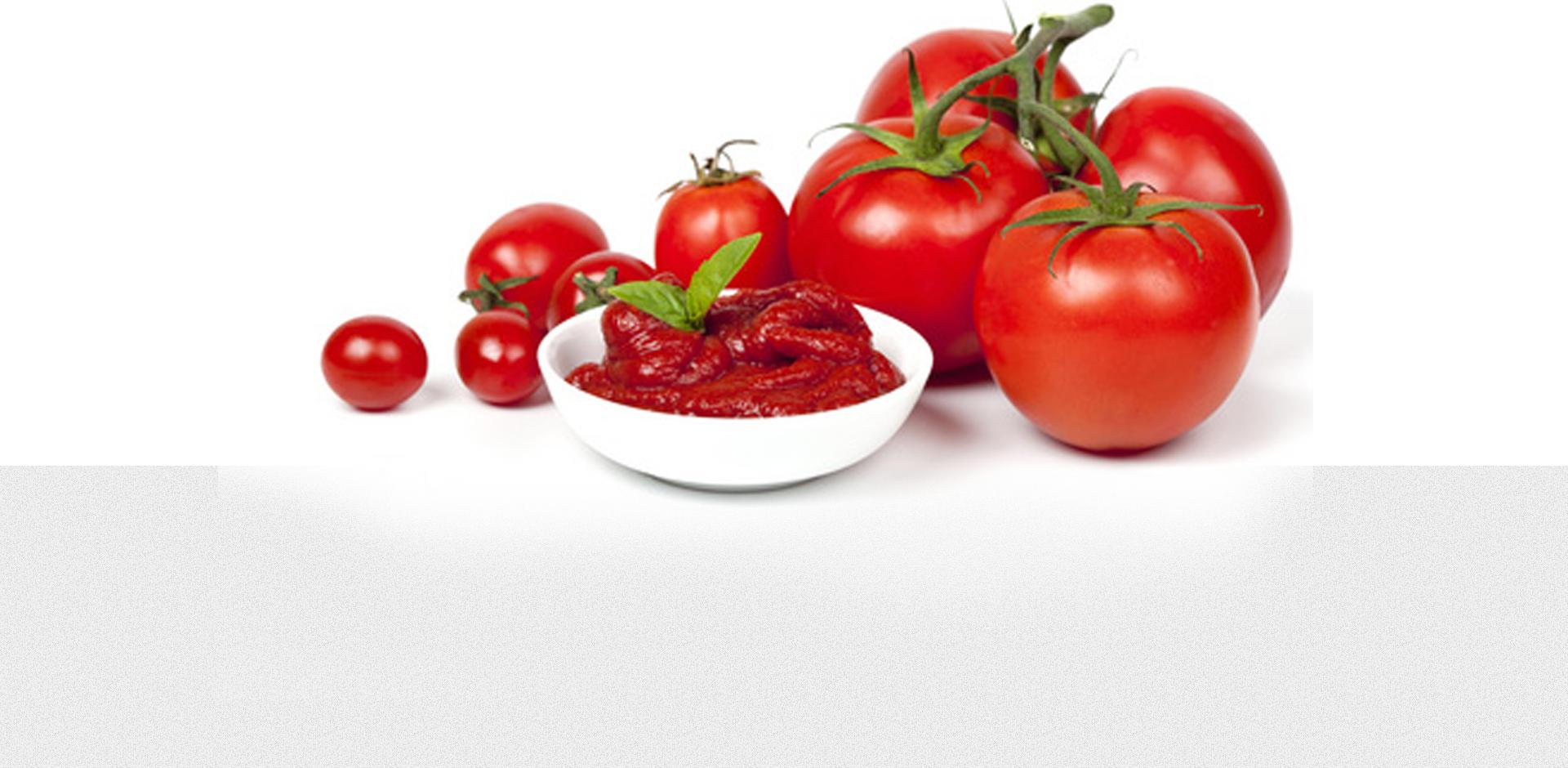 PNG Tomato Sauce - 57061