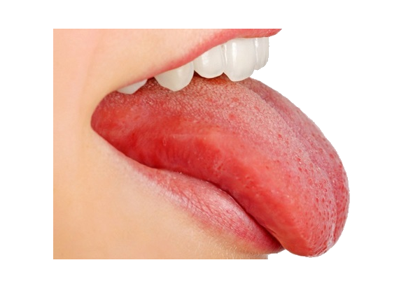 PNG Tongue - 57044