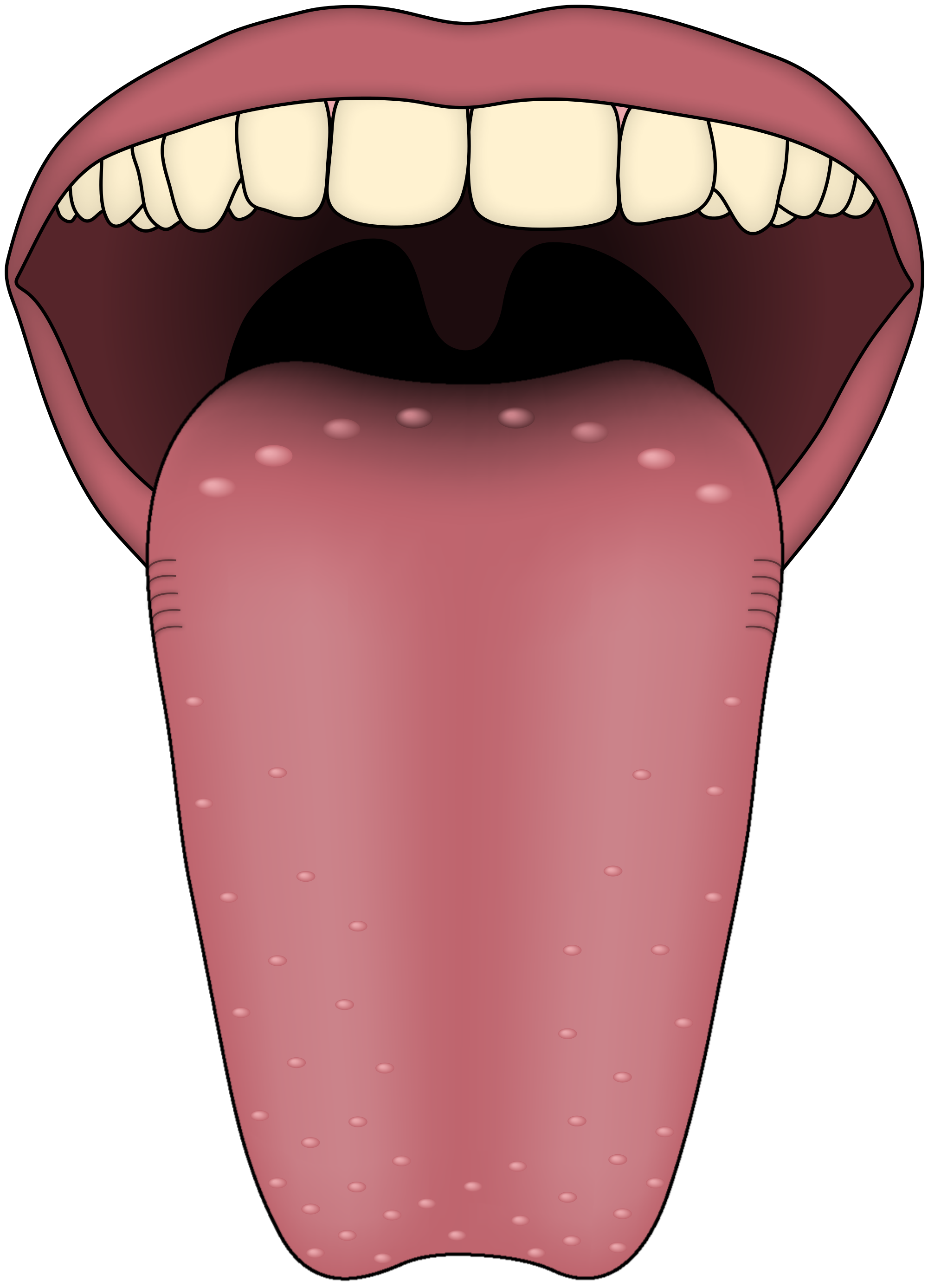 PNG Tongue - 57054