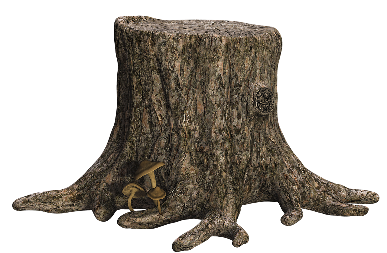 Tree Stump I By SuicideOmen - PNG Tree Trunk