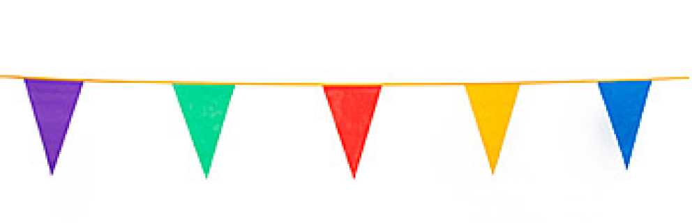Outdoor Pennant Banner Multi-Color 1/pk - PNG Triangle Flag