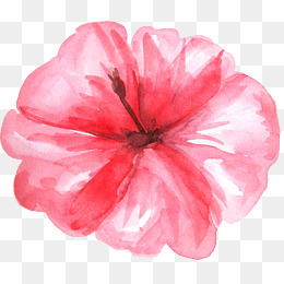 Red Exotic Flower PNG Clipart