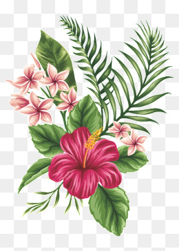 Hand-painted flowers, Flowers, Flowers, Flower PNG Image - PNG Tropical Flowers