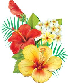 Image result for tropical flowers png - PNG Tropical Flowers
