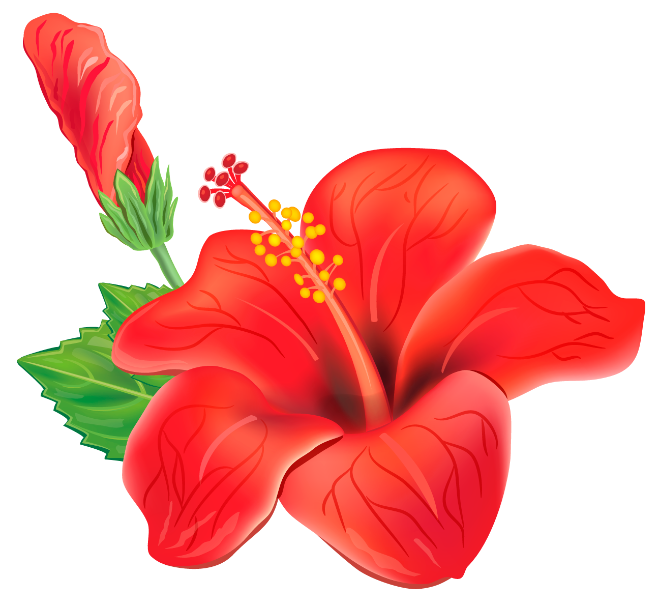 Red Exotic Flower PNG Clipart Picture - PNG Tropical Flowers