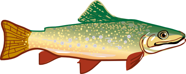 PNG Trout - 83157