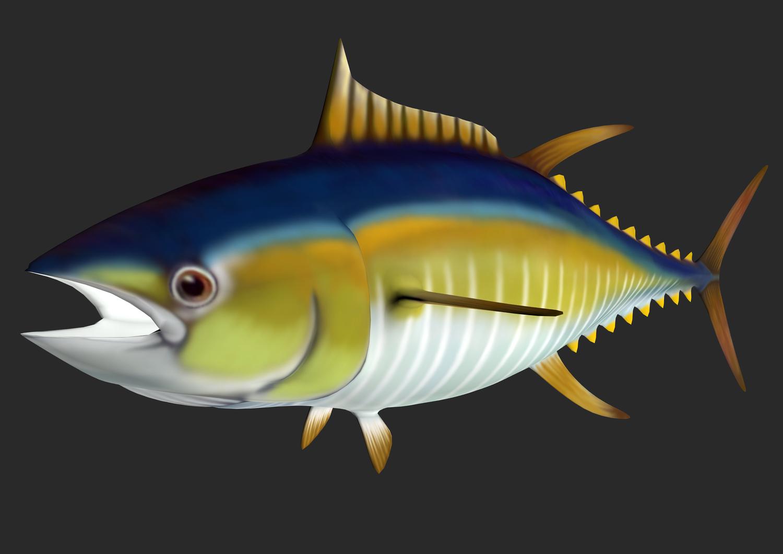 PNG Tuna - 82568