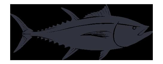 PNG Tuna - 82575