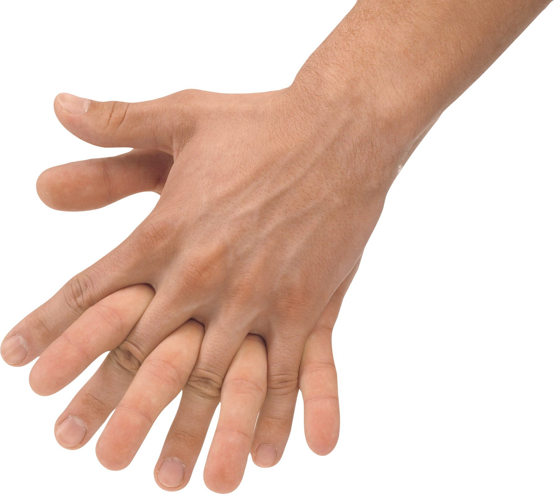 PNG Two Hands Transparent Two Hands.PNG Images. | PlusPNG