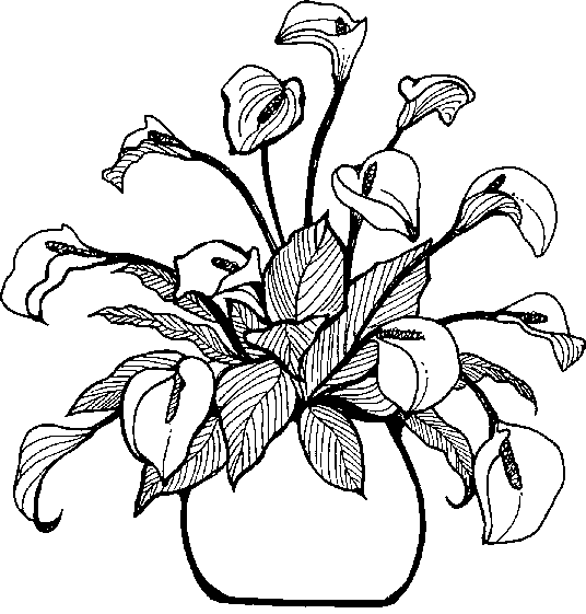 Png vase black and white transparent vase black and whiteg images clipart info png vase black and white mightylinksfo