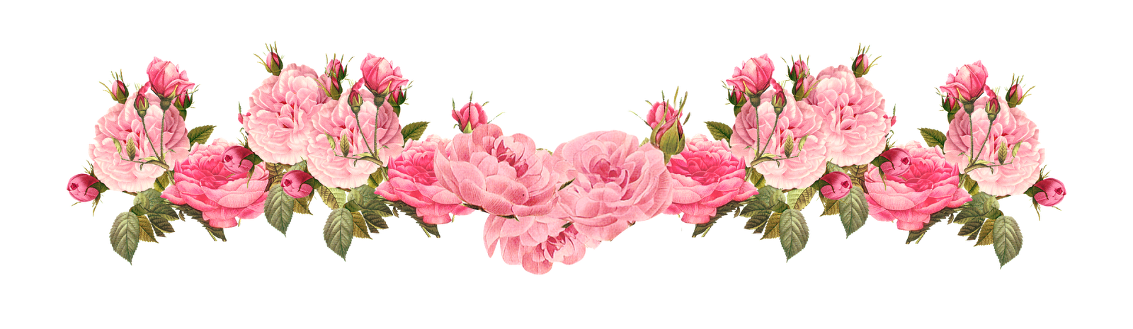 Image - Free-vintage-rose-borders-vintage -roses-scrapbooking-embellishment-uUPOyg-clipart.png | Animal Jam Clans  Wiki | FANDOM powered by Wikia - PNG Vintage