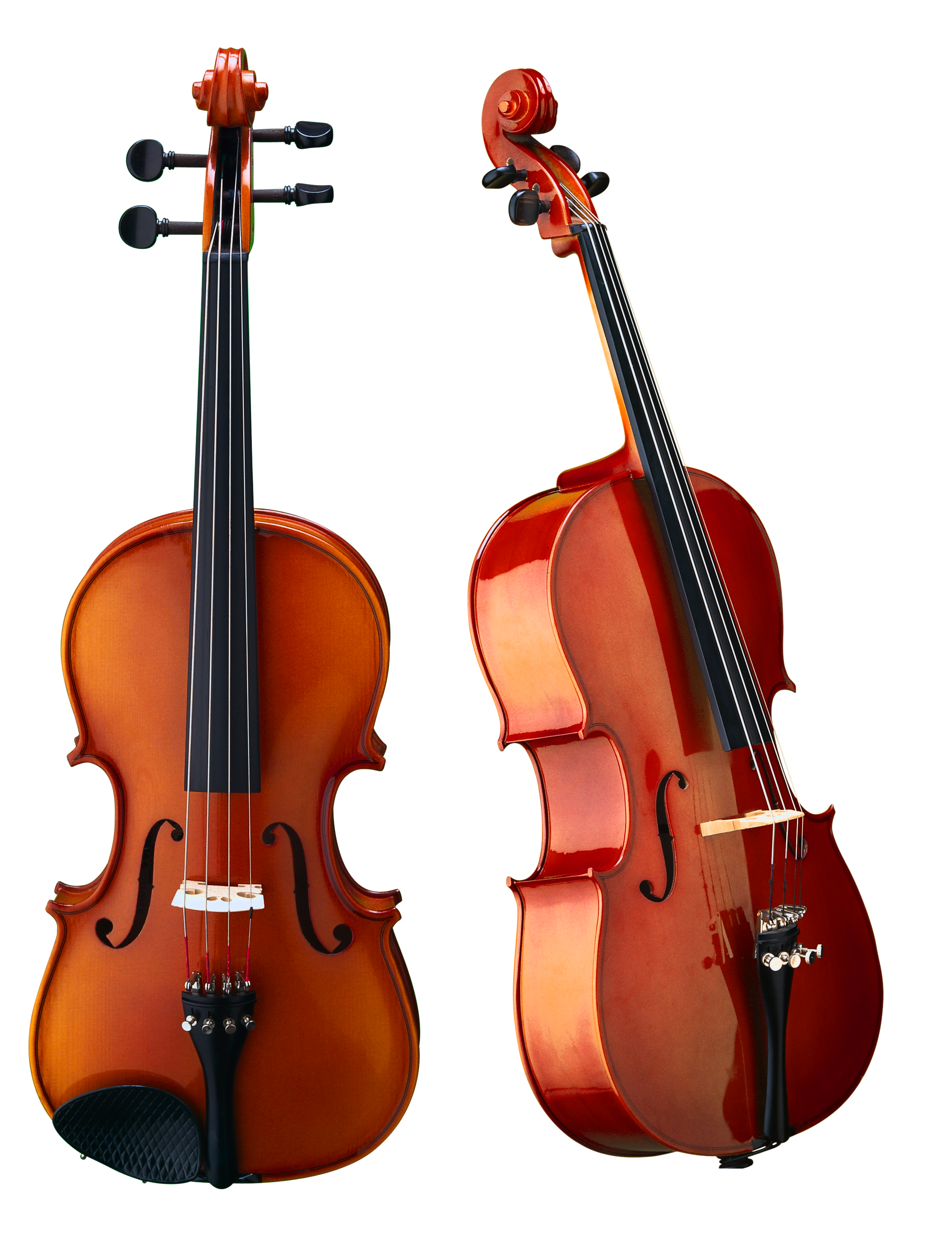 PNG Violin-PlusPNG.com-2226 - PNG Violin