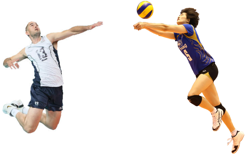 PNG Volley - 54392