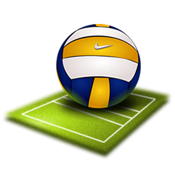 PNG Volleyball Court - 54411