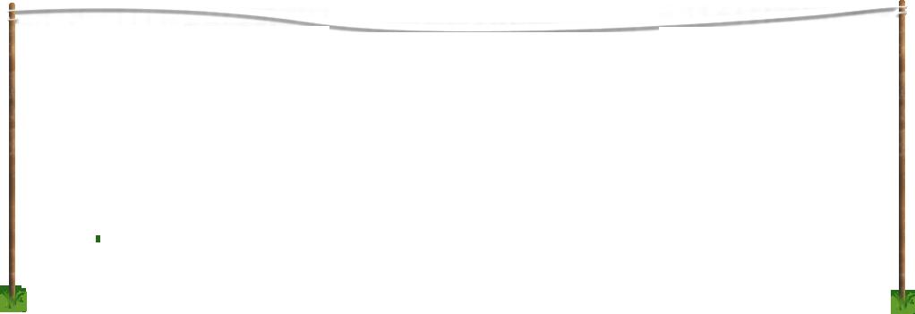 PNG Washing Line - 55458