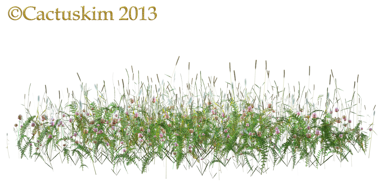 Here is a PNG Of some wildflowers/grass etc on transparent background that  I rendered using Poser. Hope it comed in handy, and you have fun using . - PNG Wildflowers