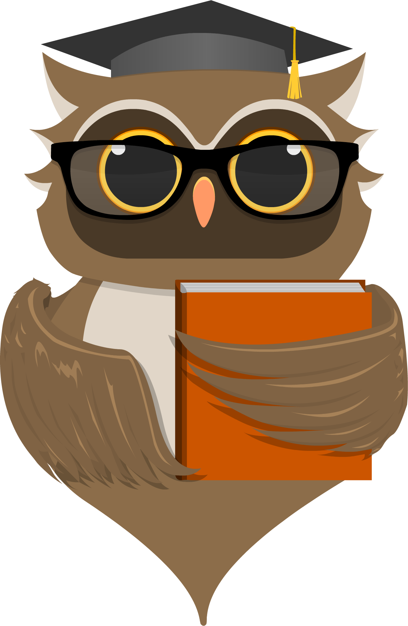 EduWise Learning is currently in development. - PNG Wise Owl
