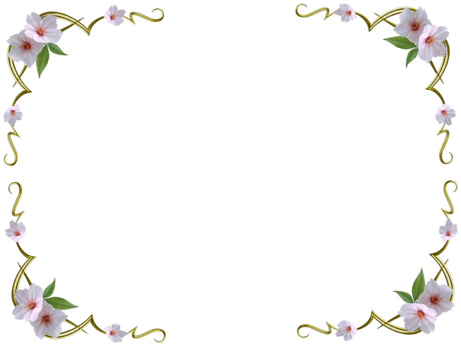 Png without white background transparent without white background white flowers without background by missesambervaughn pluspng png without white background mightylinksfo