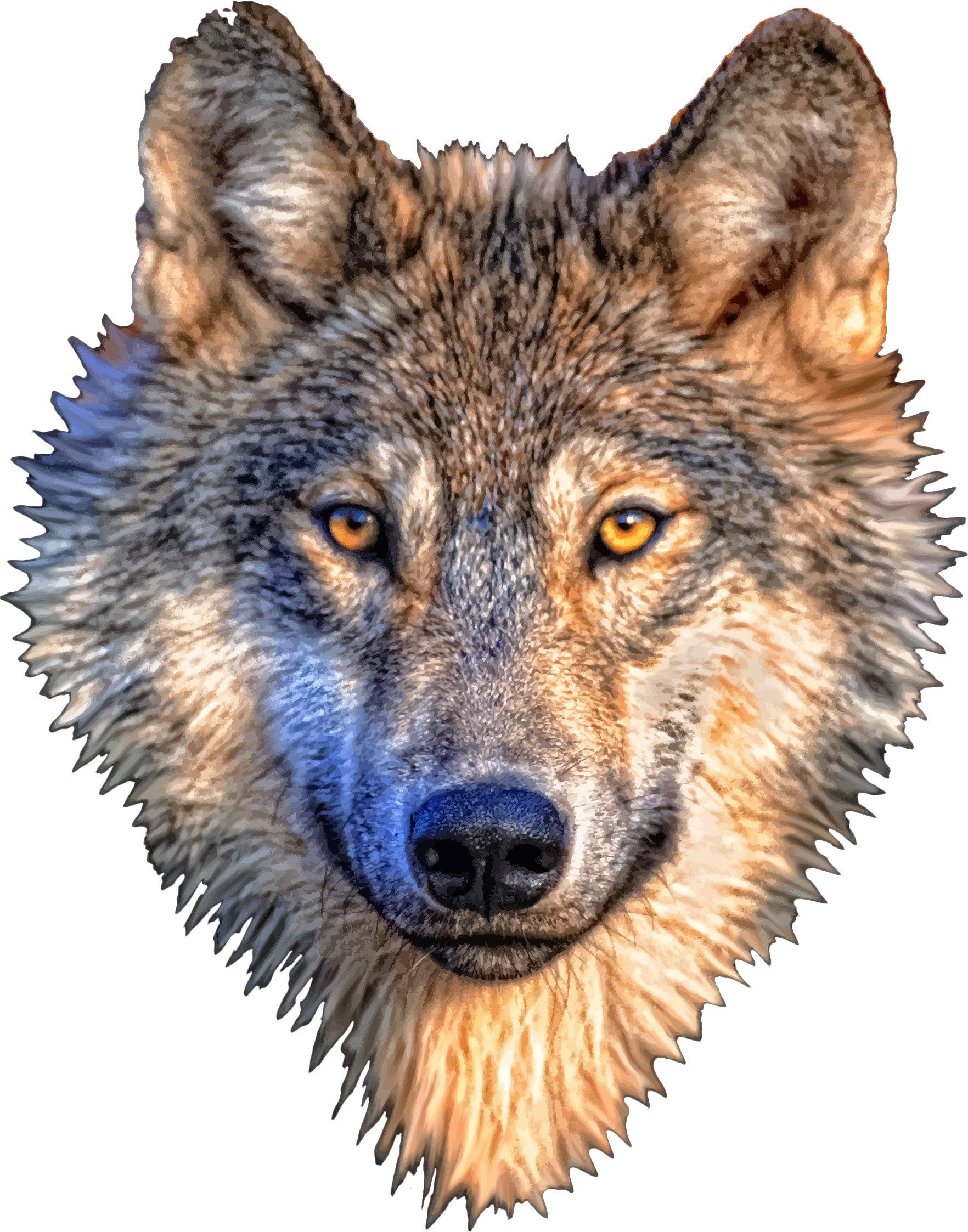 PNG Wolf Head - 42048