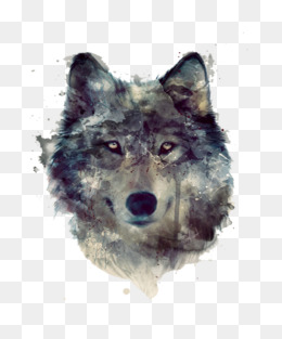 Gray watercolor wolf head · PNG PSD - PNG Wolf Head
