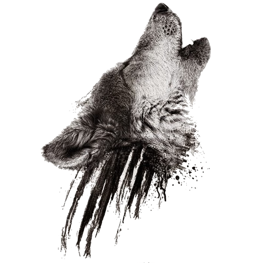 Image - Realistic howling wolf head on black smudges tattoo design.png |  Animal Jam Clans Wiki | FANDOM powered by Wikia - PNG Wolf Head