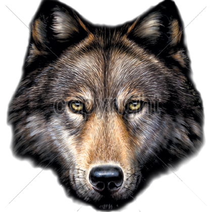 PNG Wolf Head - 42056