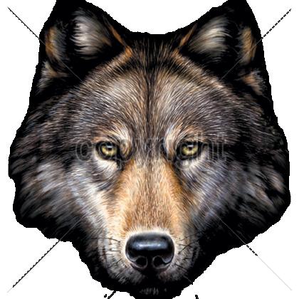 wolf head - Buscar con Google - PNG Wolf Head