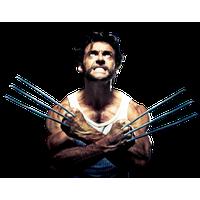 Similar Wolverine PNG Image - PNG Wolverine