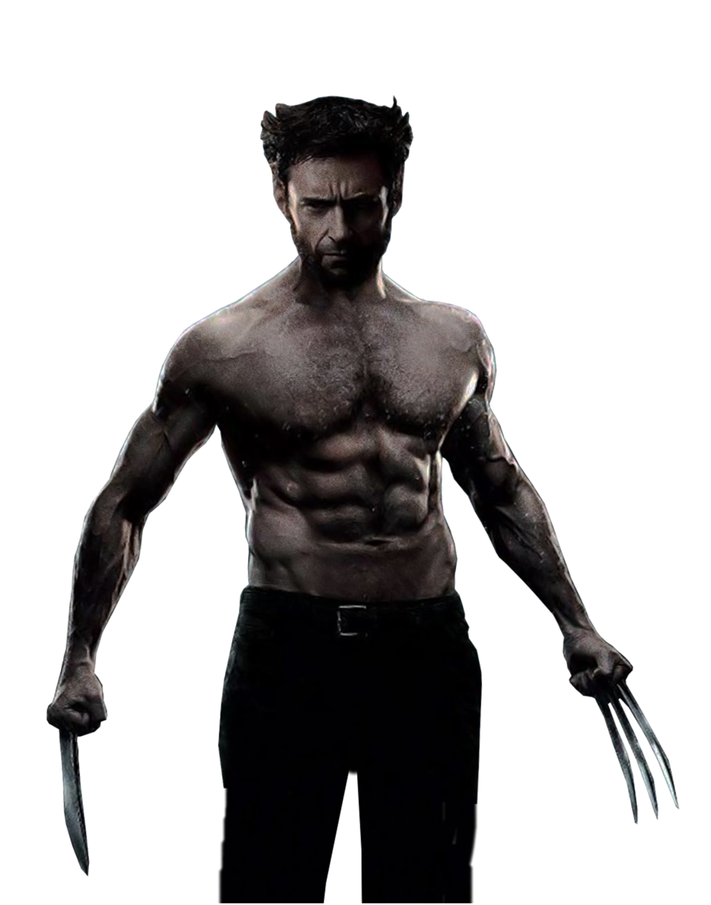 Wolverine PNG Image - PNG Wolverine