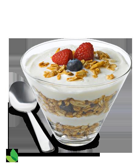 PNG Yogurt - 40464