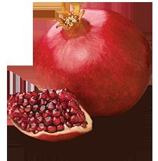 Pomegranate Png image #27829 - Pomegranate PNG