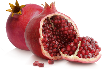 Pomegranate Png image #27836 - Pomegranate PNG