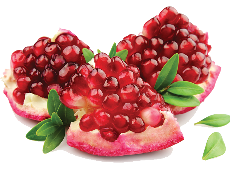 Pomegranate PNG Image - Pomegranate PNG