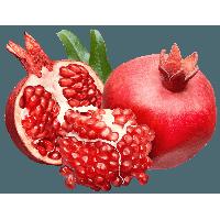 Pomegranate Png Image PNG Image - Pomegranate PNG