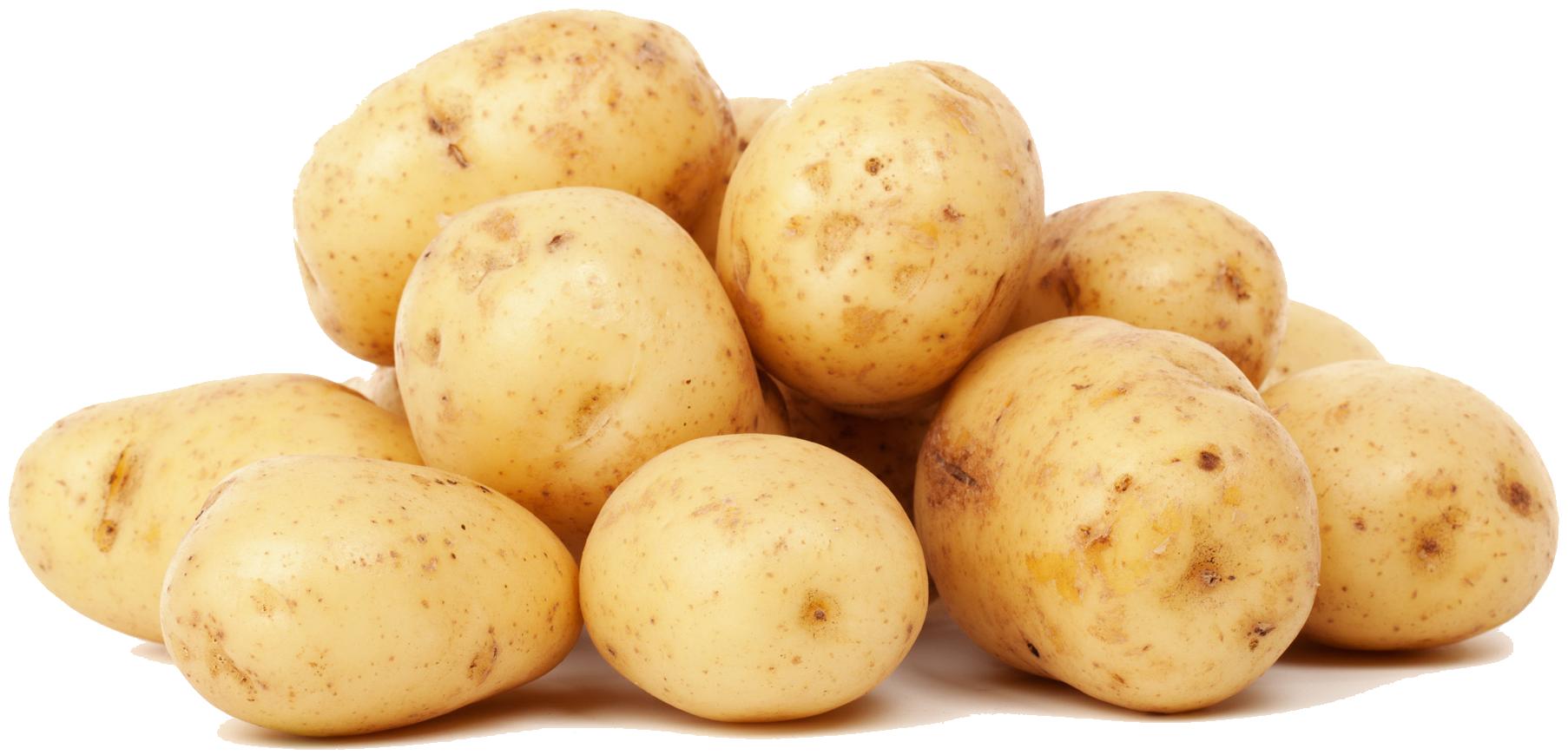 Potato HD PNG - 91664