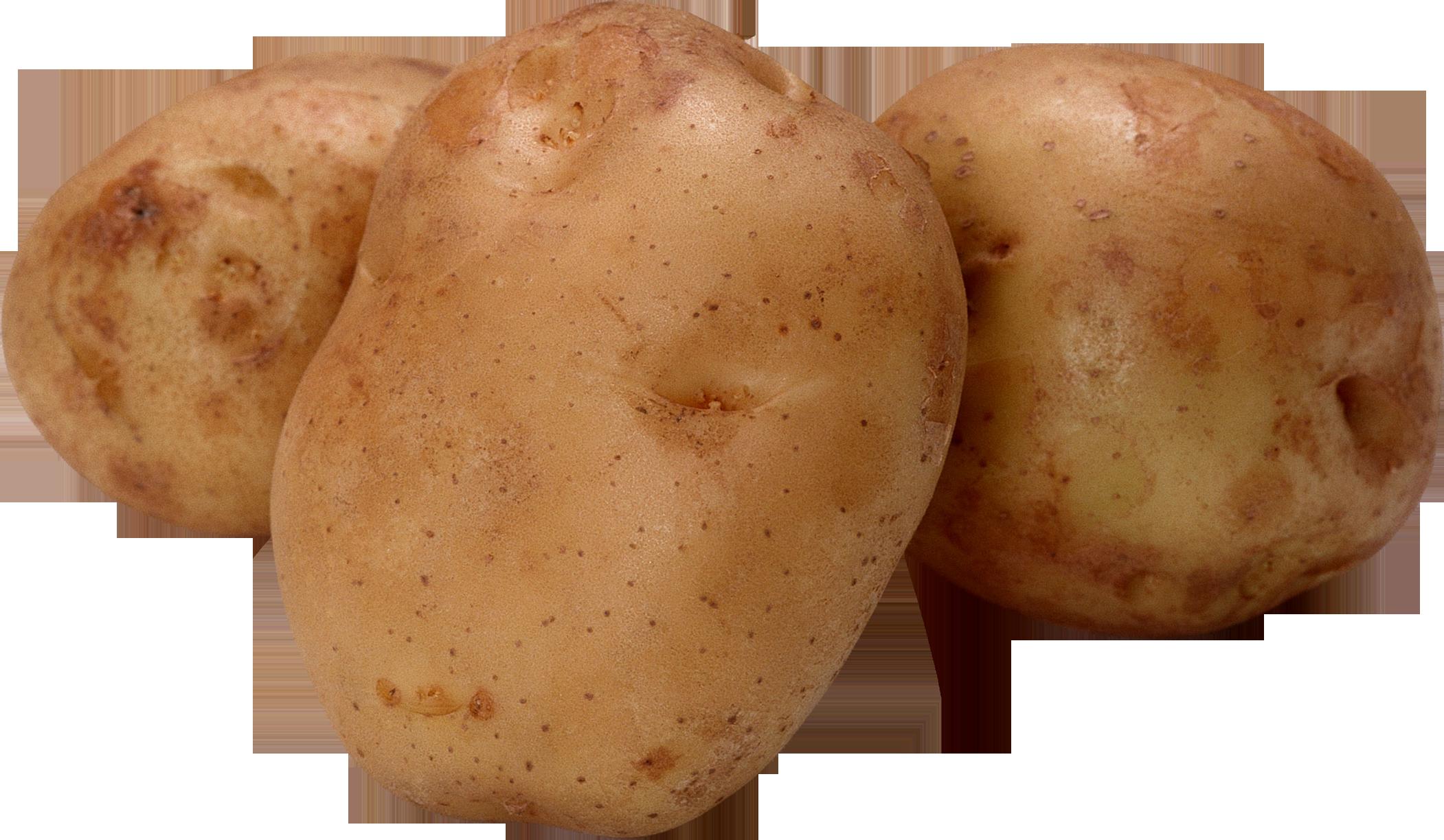 Potato png images