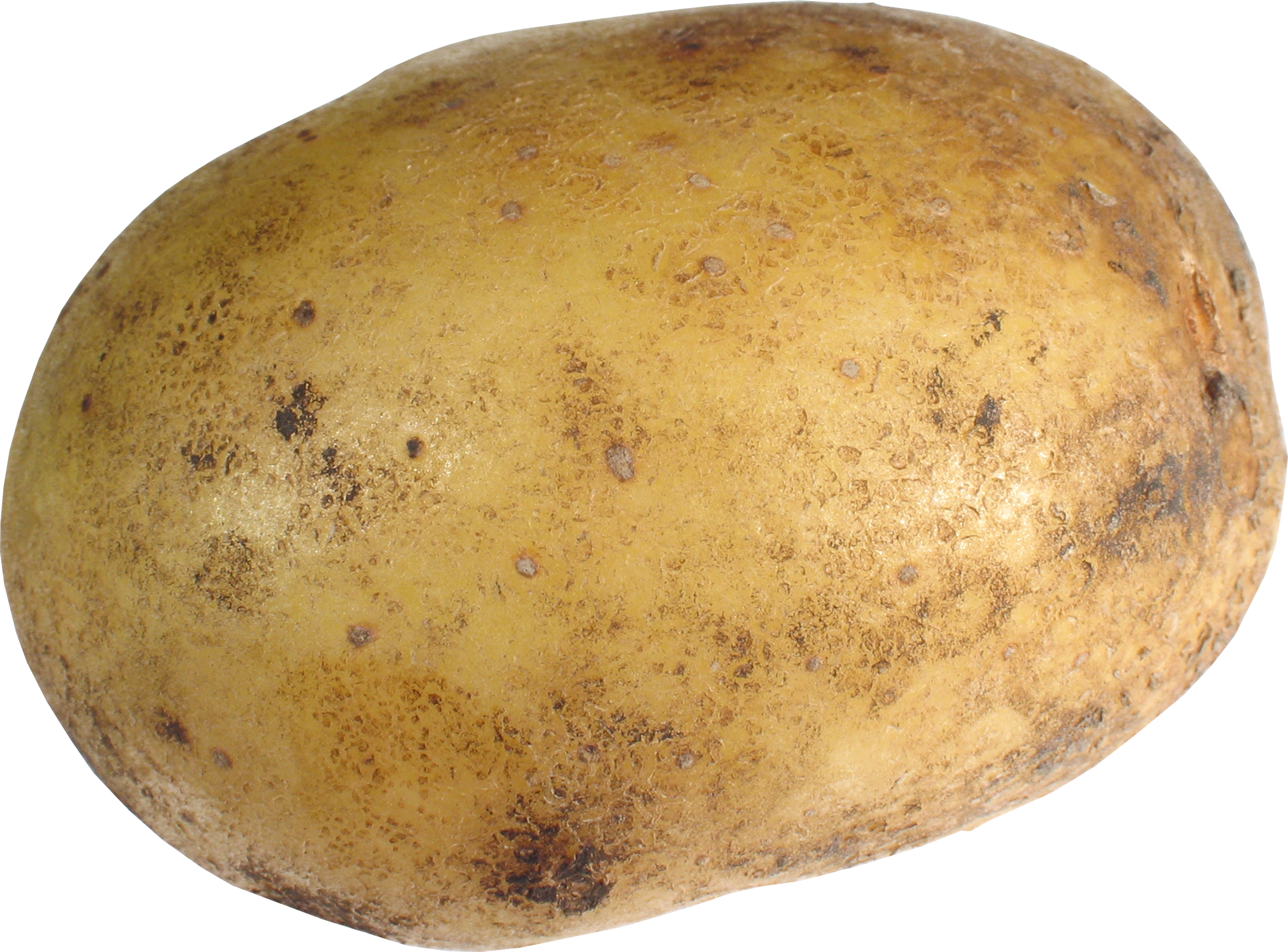 Potato png images - Potato HD PNG