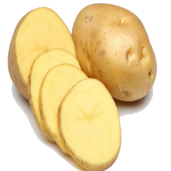 Potato PNG Pic - Potato HD PNG