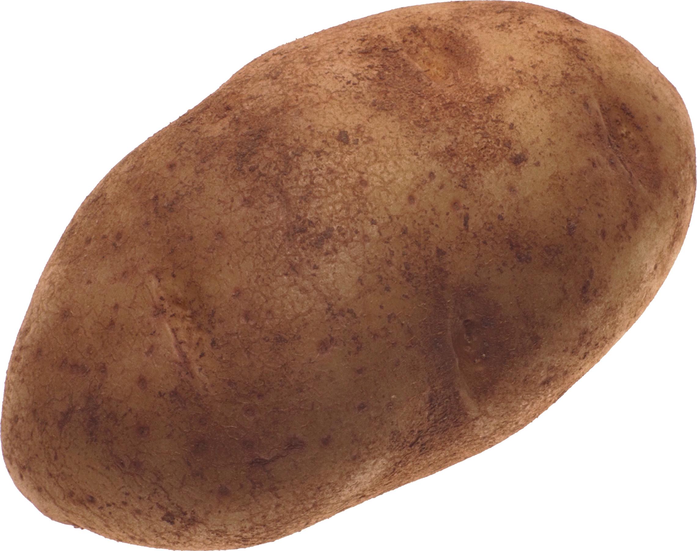 Potato PNG - 7089