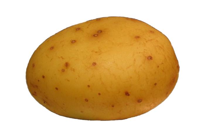 Potato PNG - 7081