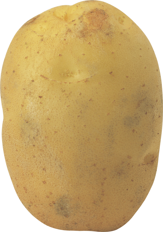 Potato PNG - 7080
