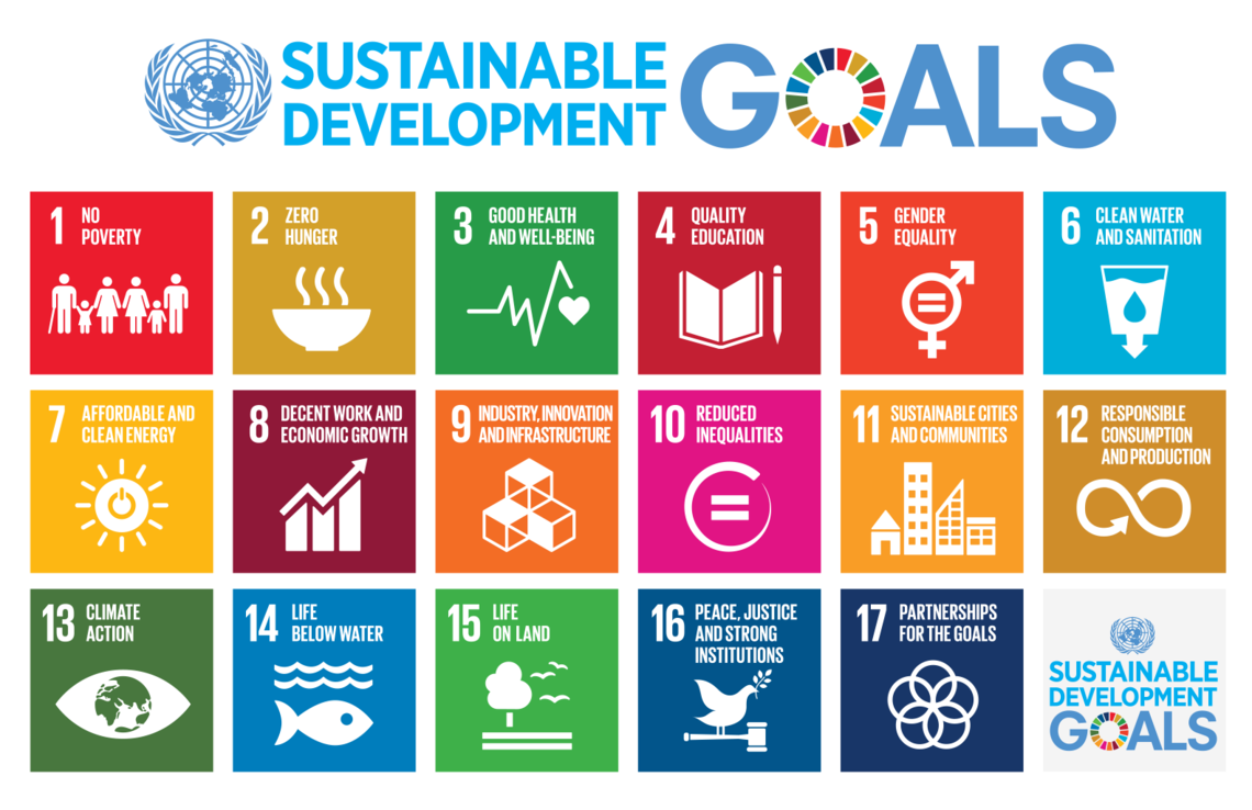 future, all activities of the PRME initiative to support the SDGs will  contribute to this. - Principle Of Initiative In Management PNG