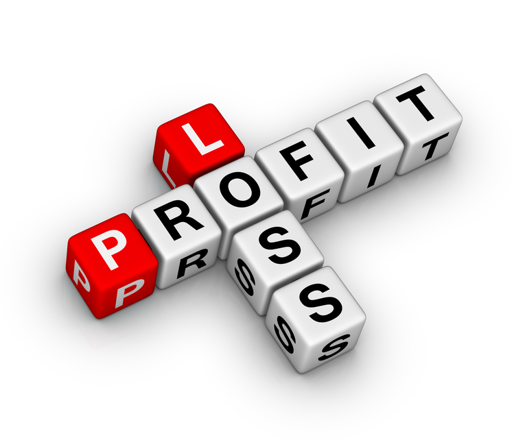 12-Month Profit and Loss Projection - Profit And Loss PNG