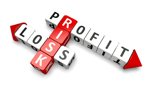 creditRiskProfitLoss - Profit And Loss PNG