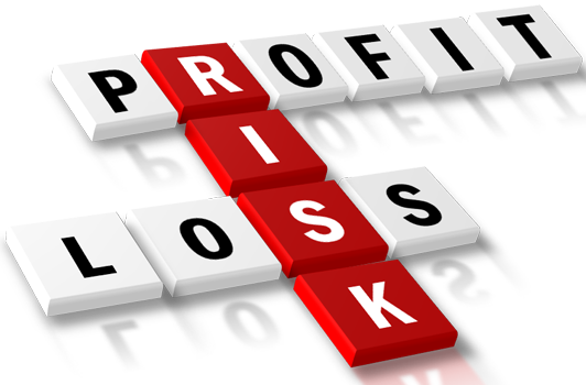 Profit and Loss - Xlskoor . - Profit And Loss PNG